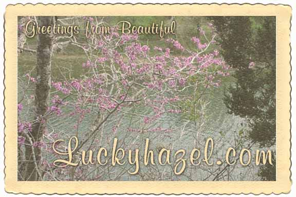 Greetings from  Beautiful Luckyhazel.com.